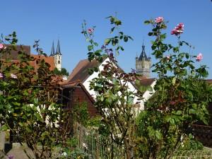 Blick vom Schwanengäßchen auf die Altstadt von Bad Wimpfen