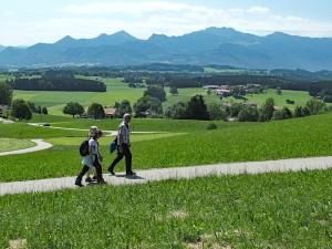 Herrliche Bergsicht auf die Chiemgauer Alpen